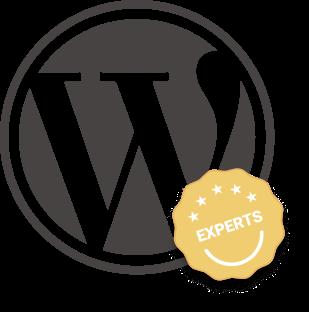 Wordpress expert designer and developer